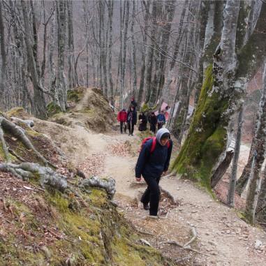 Pe munte, spre Pătrunsa